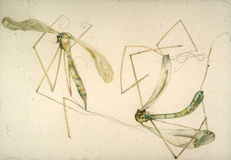 deadbug1